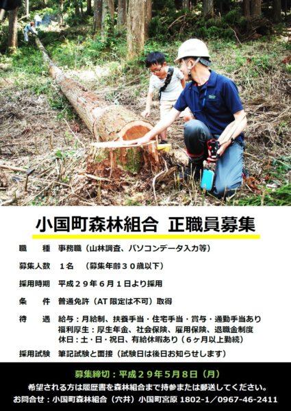 小国町 森林組合 林業 採用 小国杉