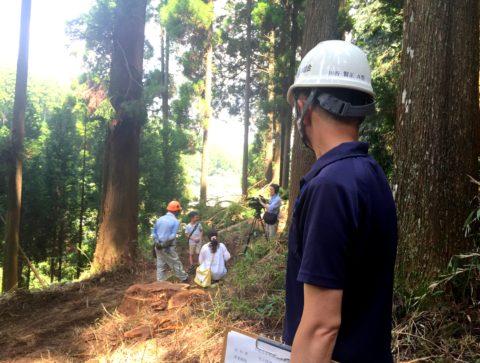 小国杉 お父さん 採用 林業